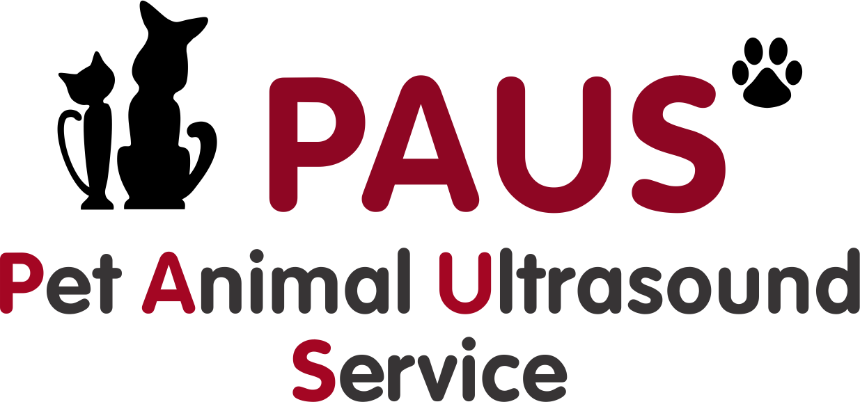 Pet Animal Ultrasound Service